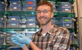 National Science Foundation grants Professor Woodhams the prestigious Faculty Early Career Development Award